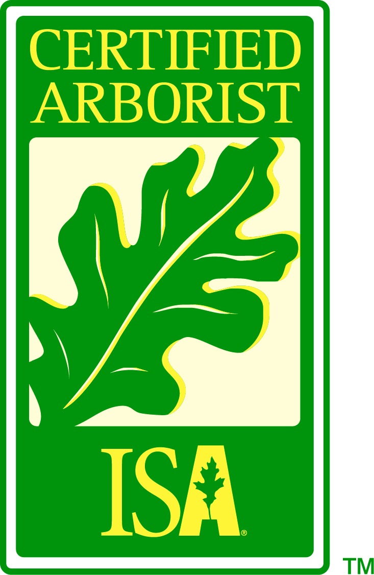 certified arborist on staff