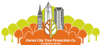 Forest City Tree Protection Company, A Lanphear Service